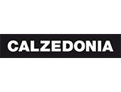 CALZEDINIA